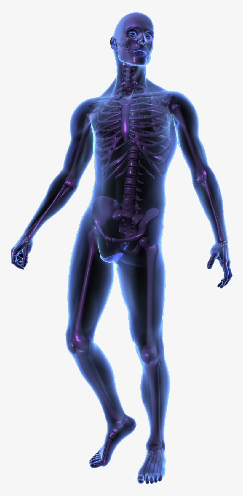 Human Body Silhouette Png.
