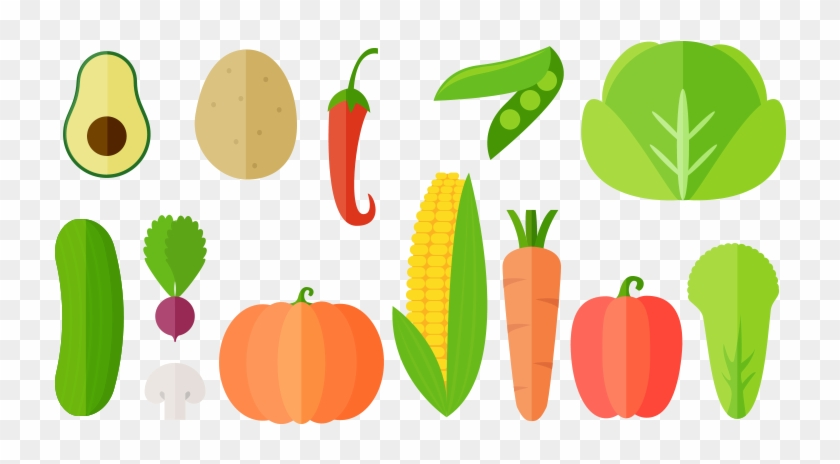 Vegetables Vector Illustrations &ndash Free Download.