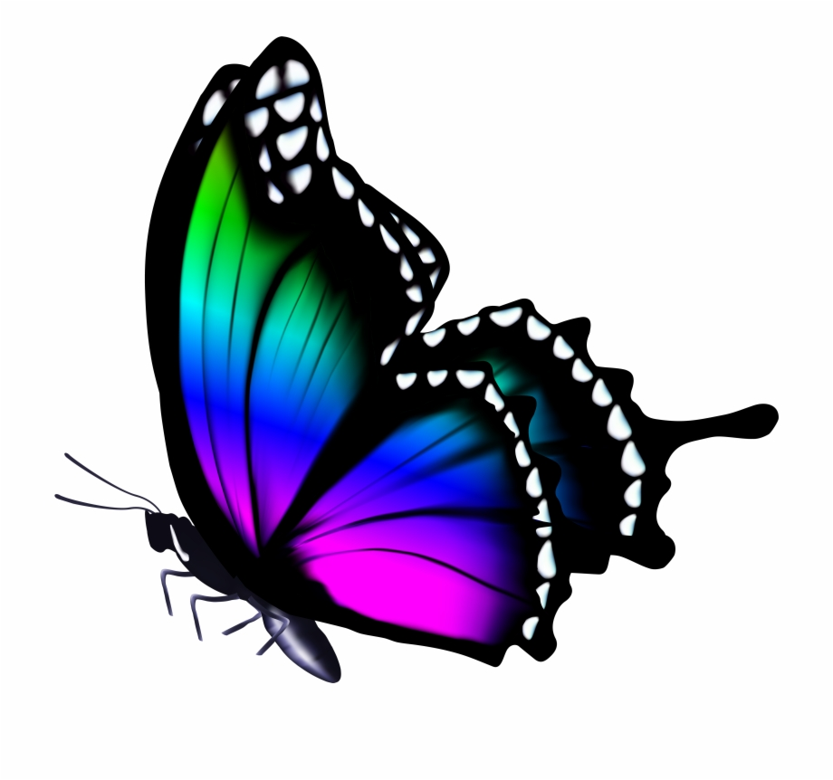 Colorful Png Clip Art Image Gallery Yopriceville.