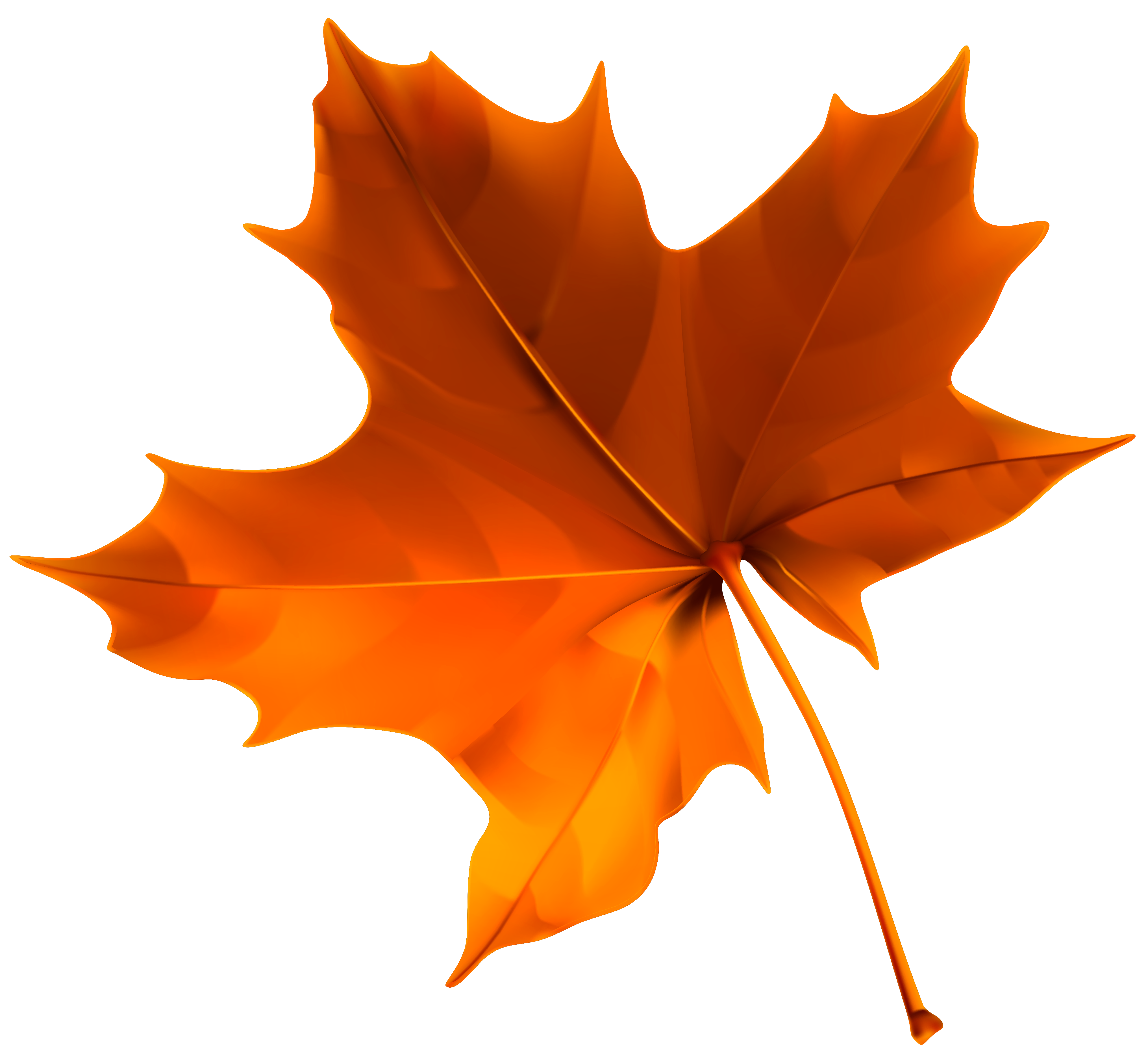 Autumn Red Leaf PNG Clipart Image.
