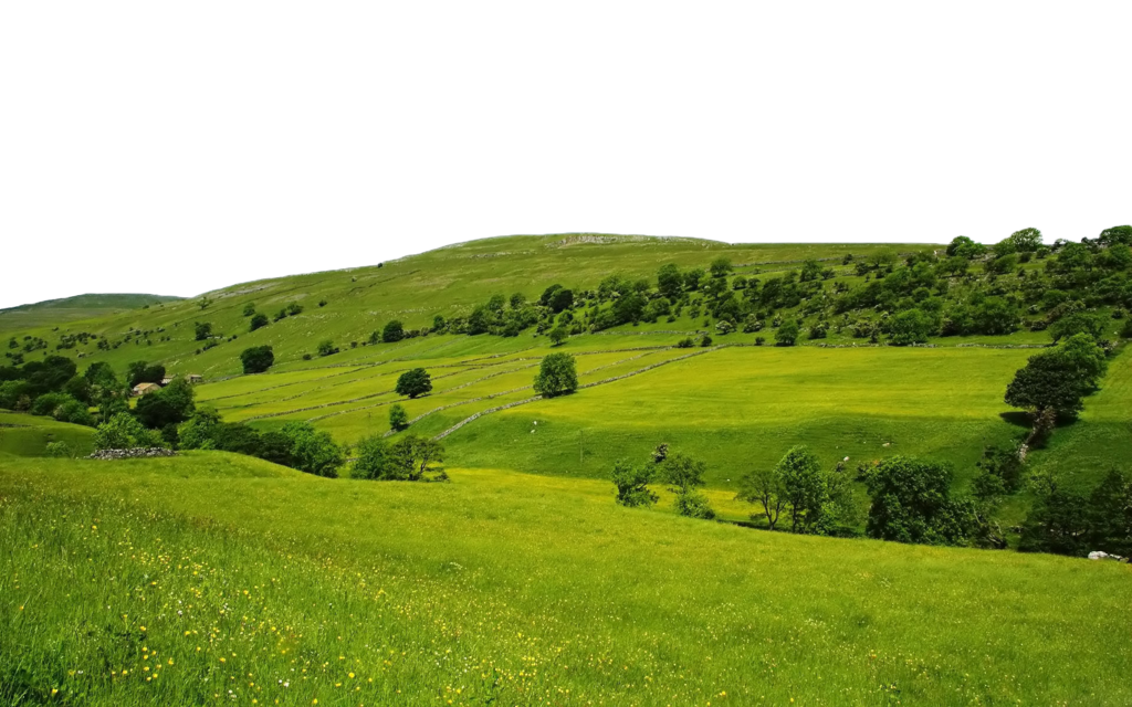 Download Nature Free Download PNG.