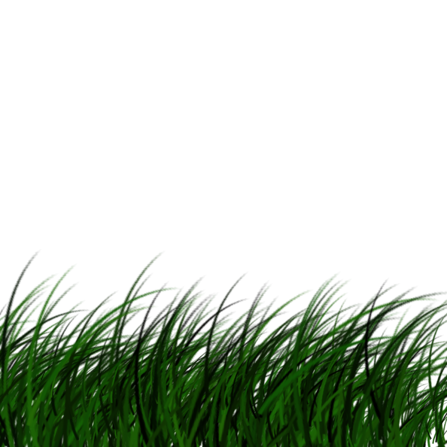 Download Free png grass png transparent background image.
