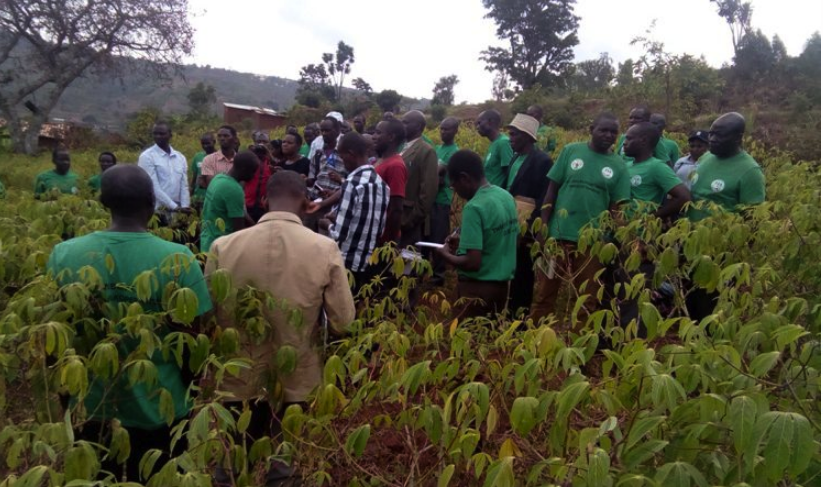 Rwanda Sets Up Incentive Fund For Farmer Promoters.