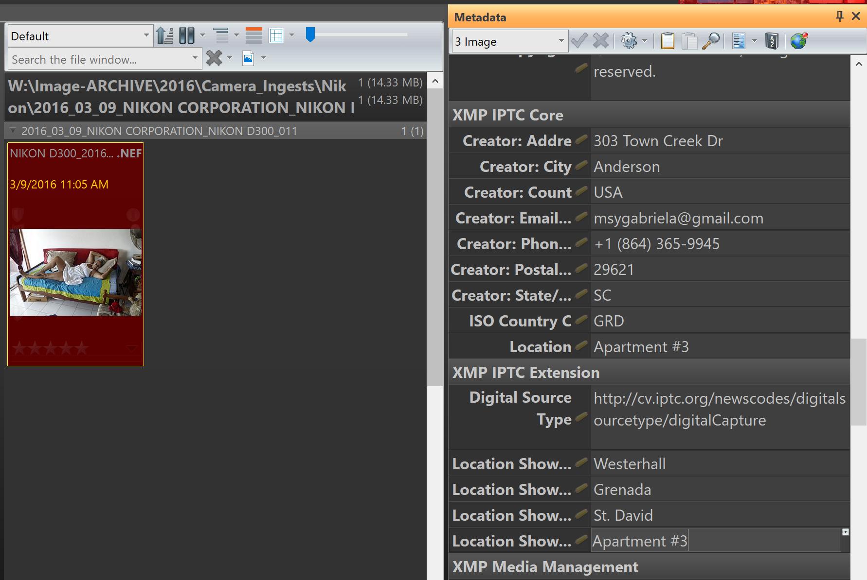 IPTC in Nikon NEF files (photools.com IMatch).