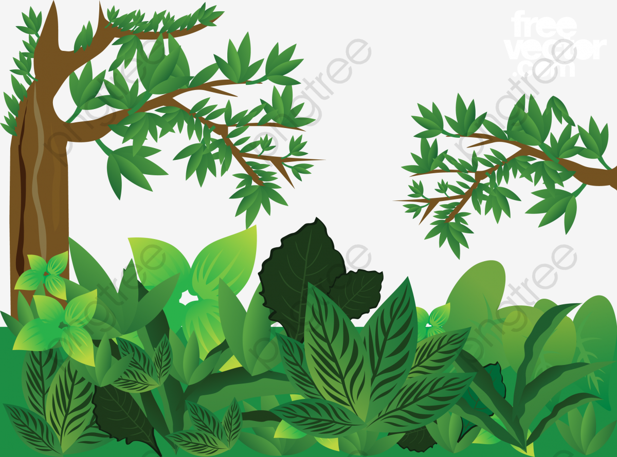 Green Jungle Vector, Trees, Leaves, Big Leaves PNG and.