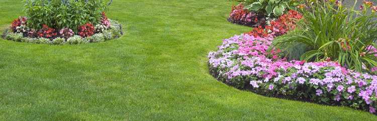 Landscaping and Lawn Care in Toms River, NJ.