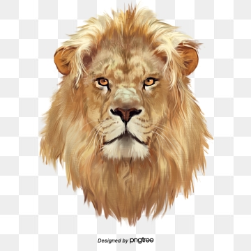Lion PNG Images, Download 3,815 Lion PNG Resources with.