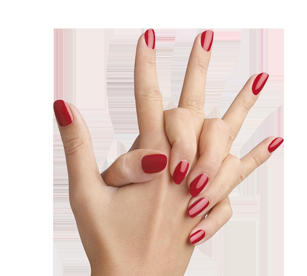 Nails PNG Image.