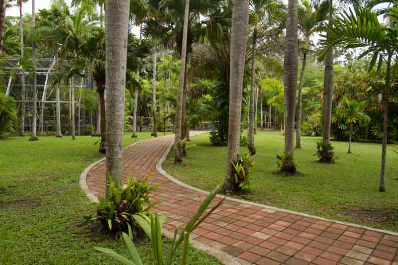 Image Of A Nature Park Png & Free Image Of A Nature Park.png.