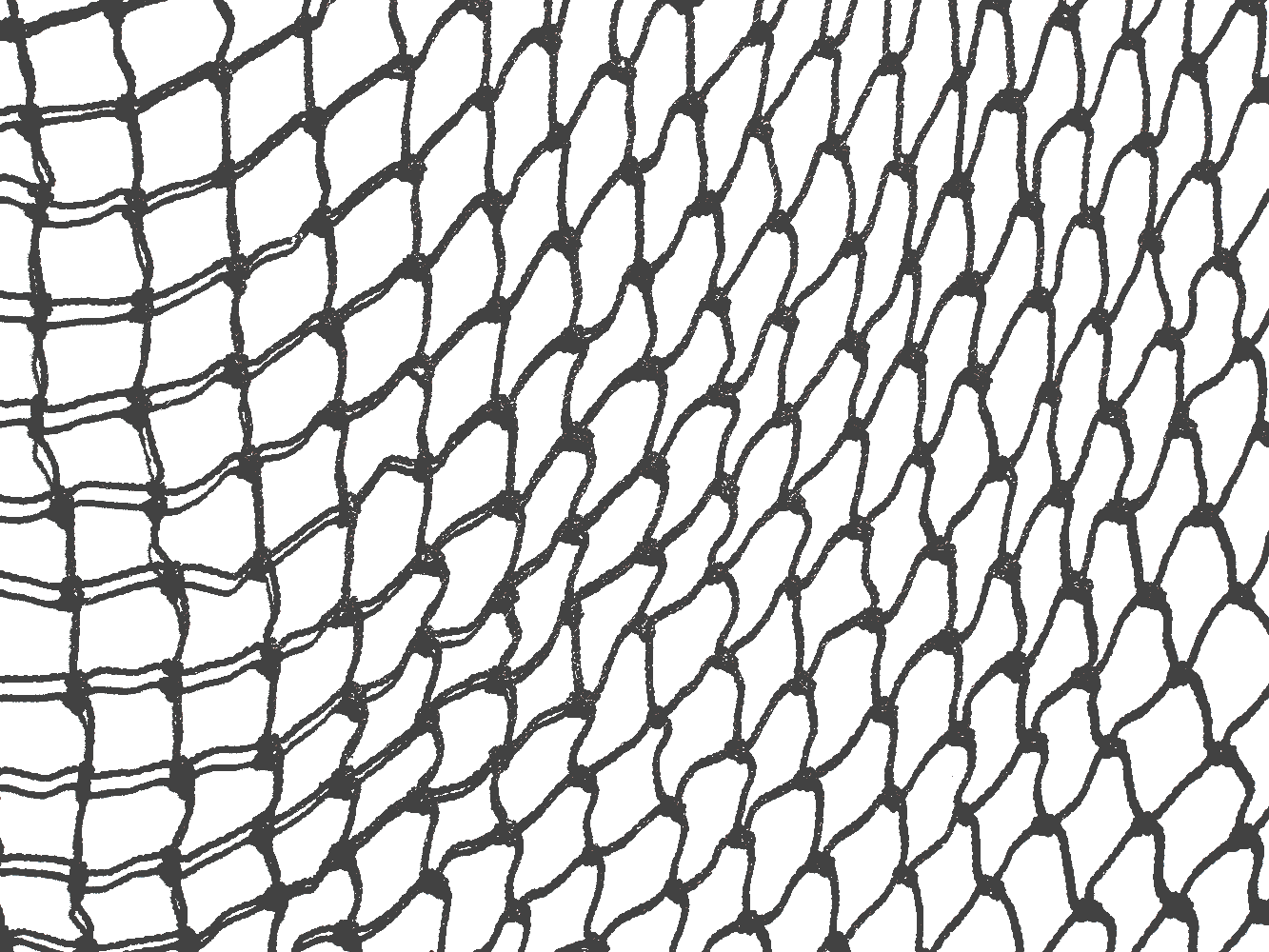Download Fishnet Transparent Draw.