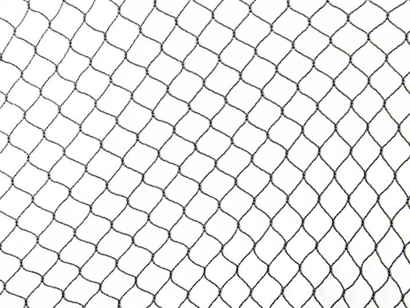 Net PNG Images.