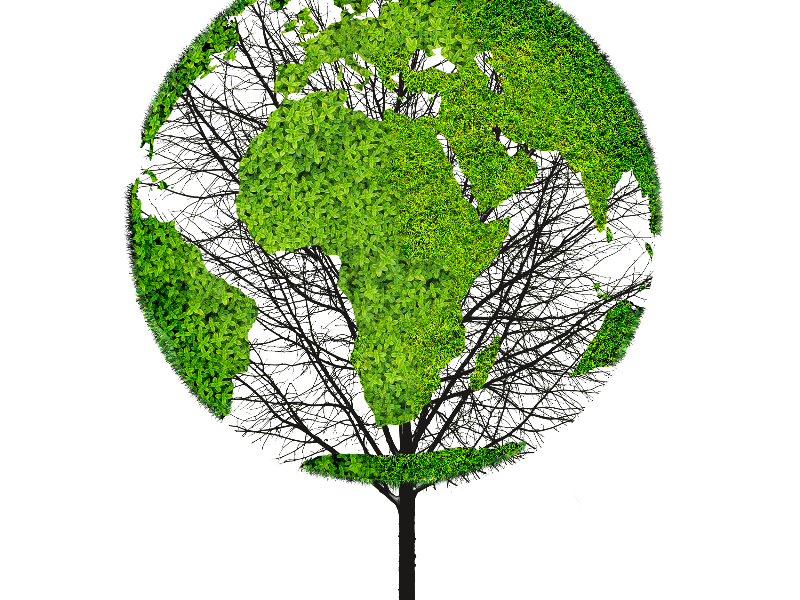 Earth World Map Green Tree PNG Object for Photoshop.