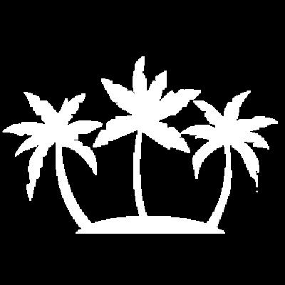 Coconuts PNG.