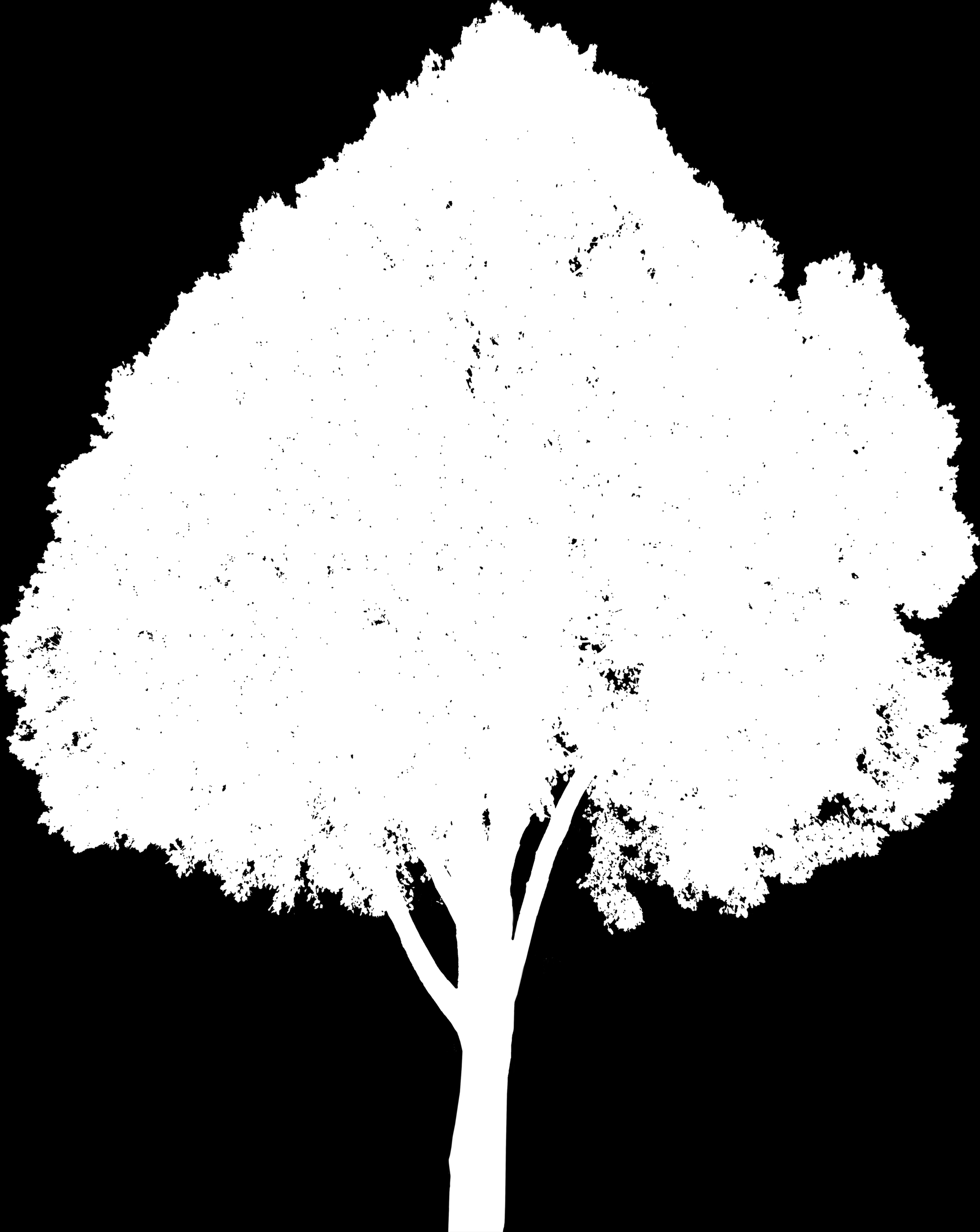 PNG Tree # 1 (with Opacity Map).