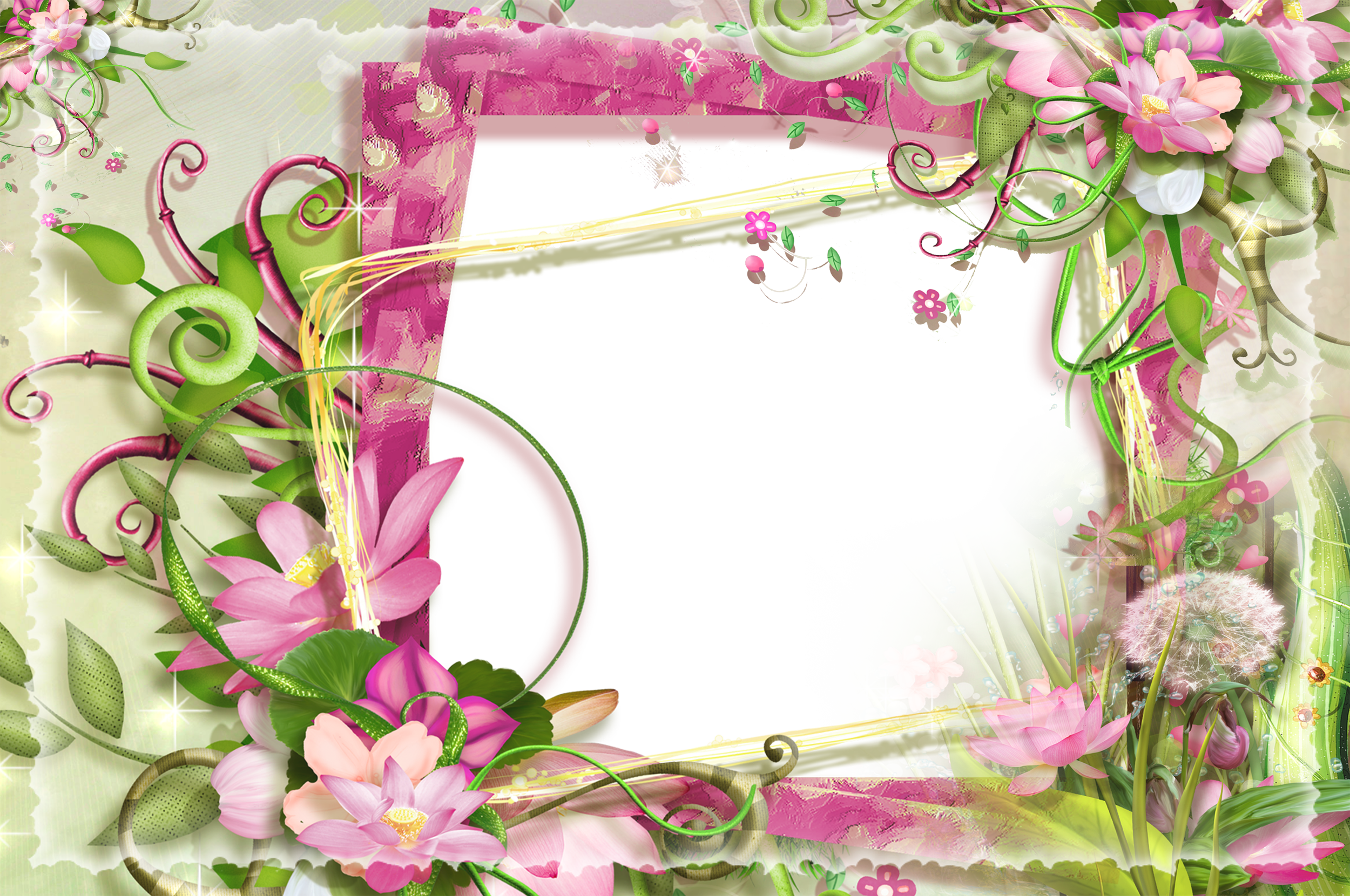 Pink and Green Flowers PNG Frame.