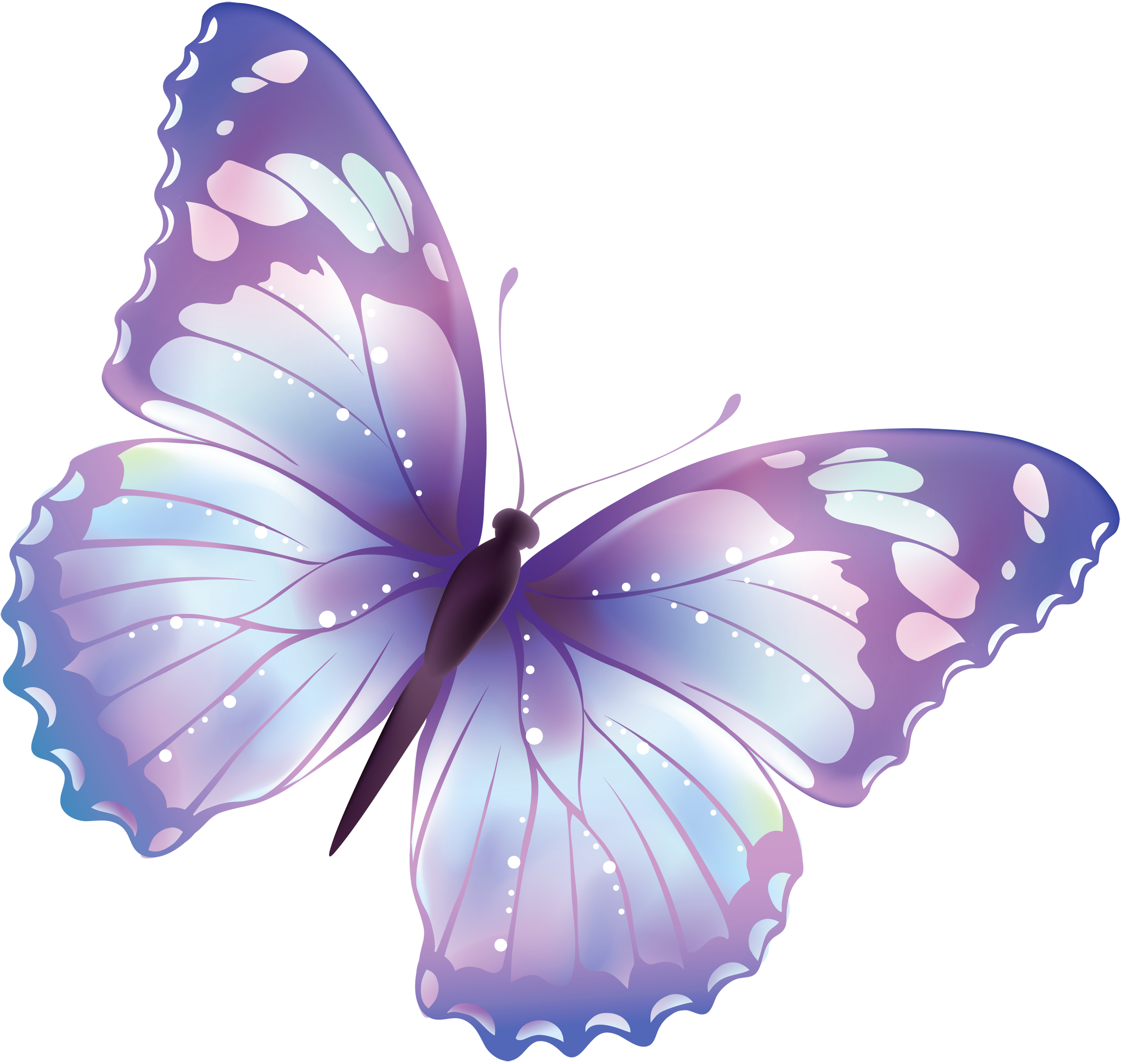 Butterfly PNG Transparent Images.