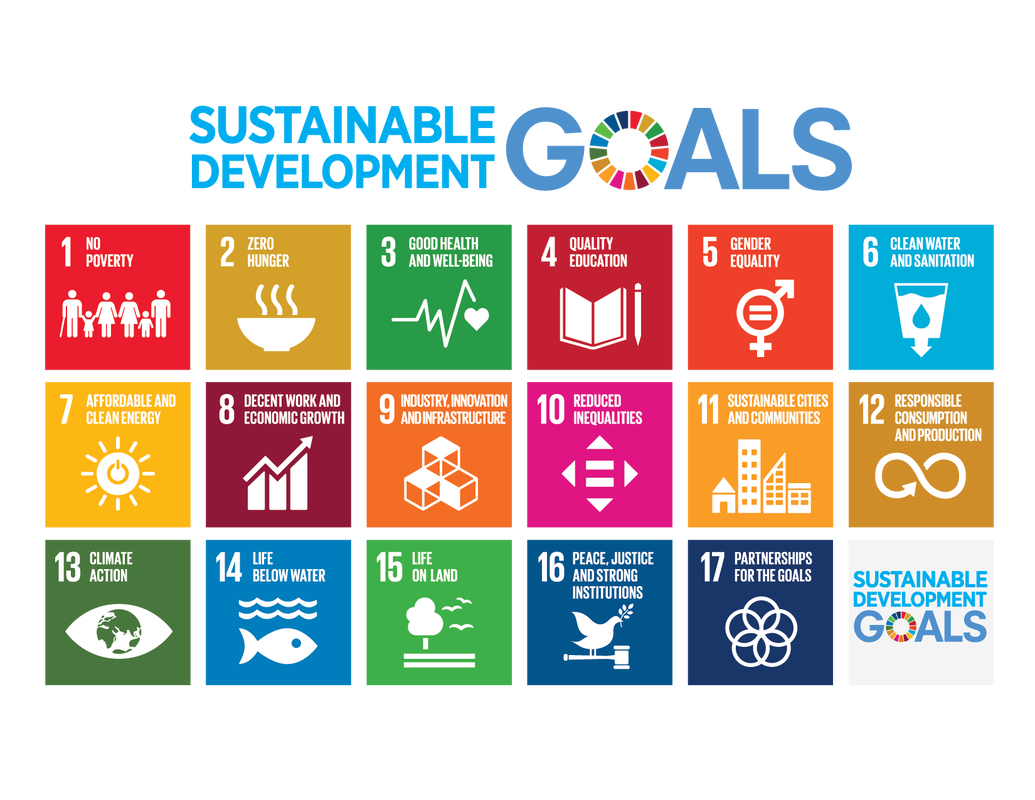 Transform Together represents global efforts to achieve SDG.