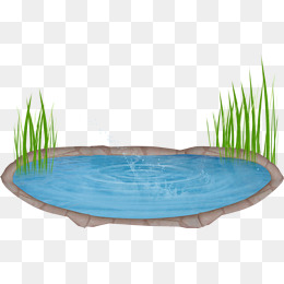 Pond Png & Free Pond.png Transparent Images #32144.