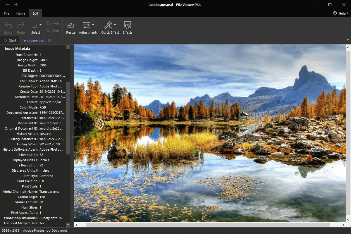Open .PSD Files with File Viewer Plus.