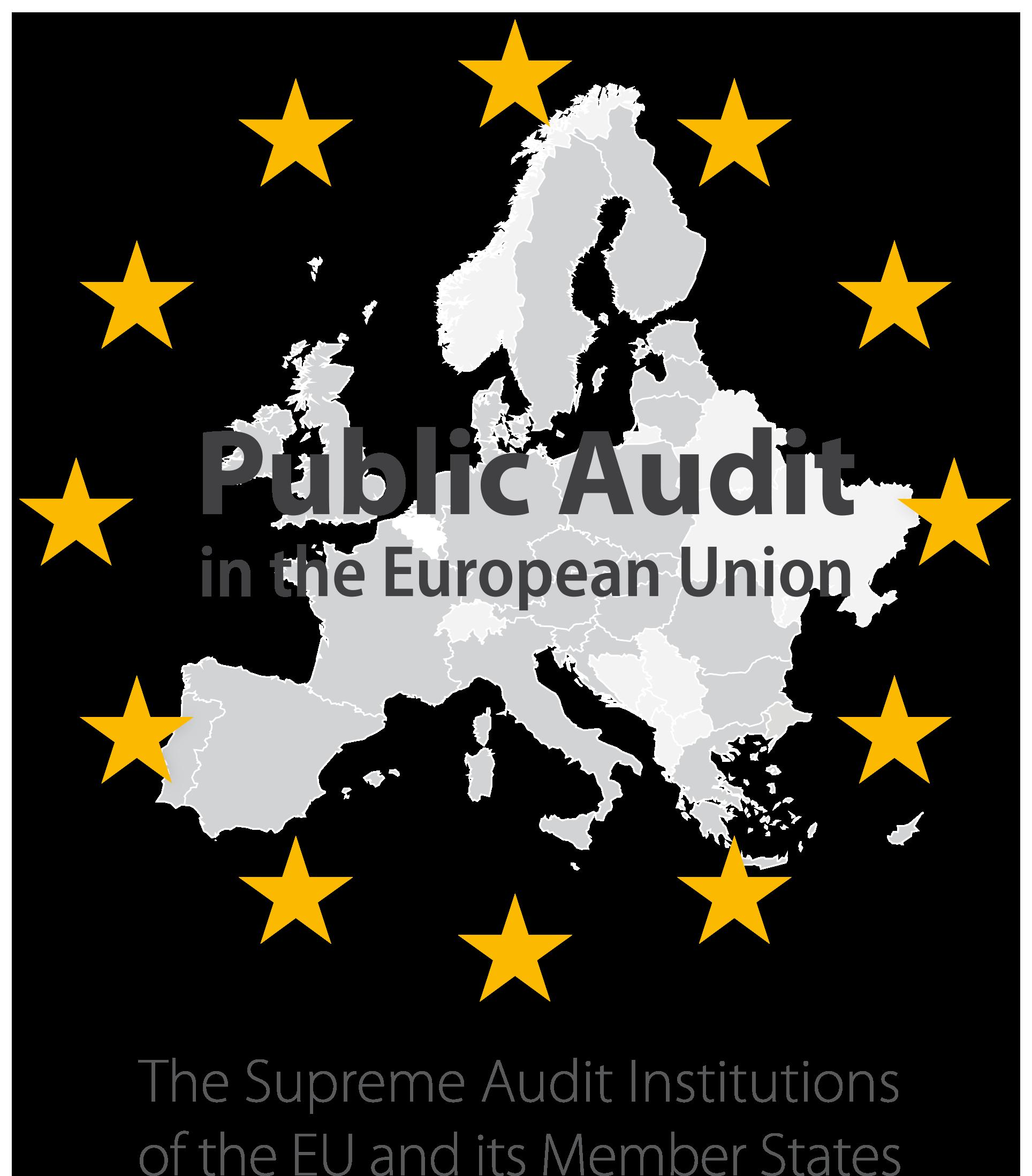 Public Audit in the European Union 2019 Edition.