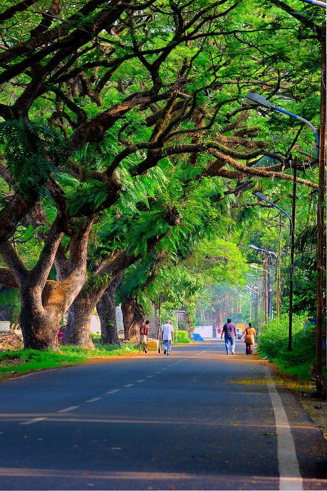 Fort Kochi by Ershad Ashraf on 500px road.