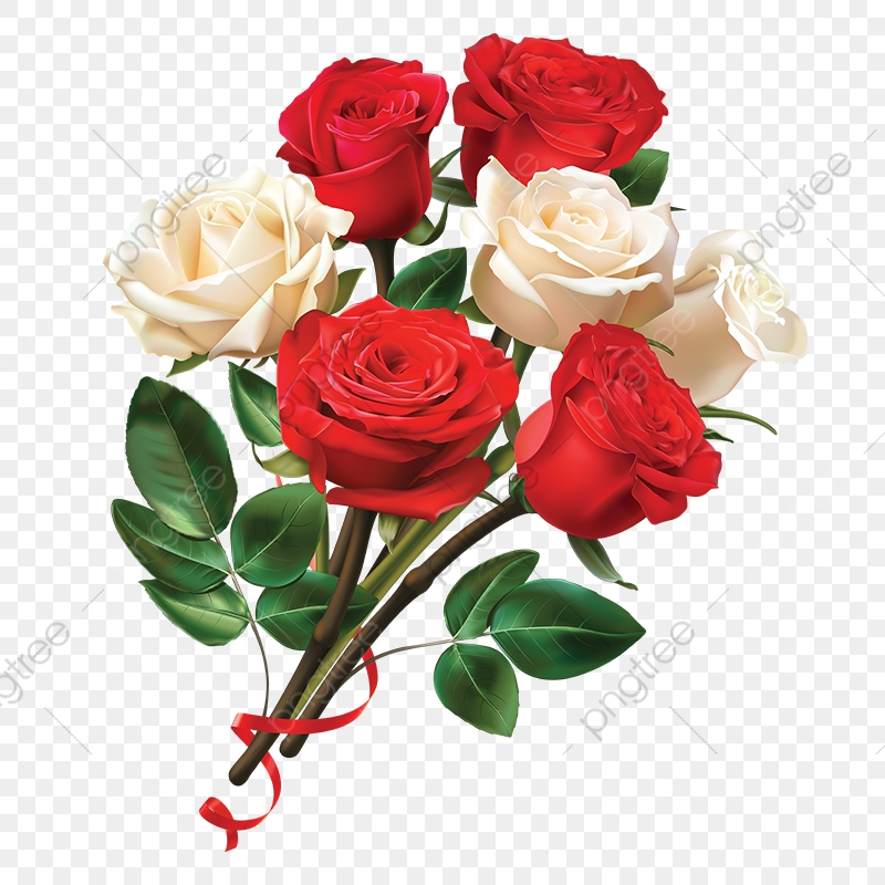 Red And White Rose Flower, Rose Clipart, Flower Clipart.