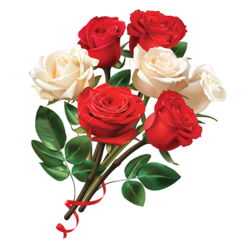 Red Rose PNG Images.