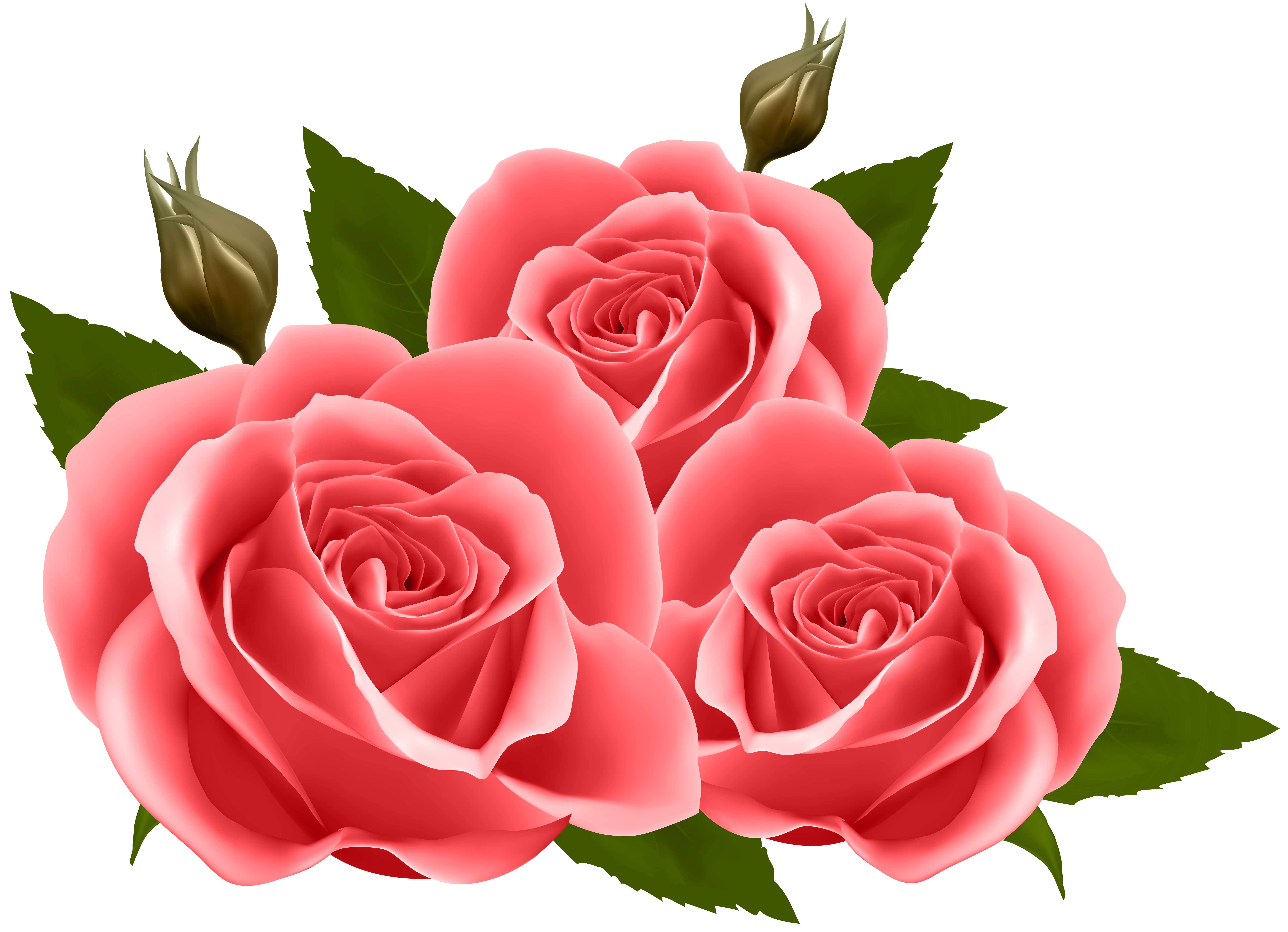 Red Roses PNG Clip Art Image.