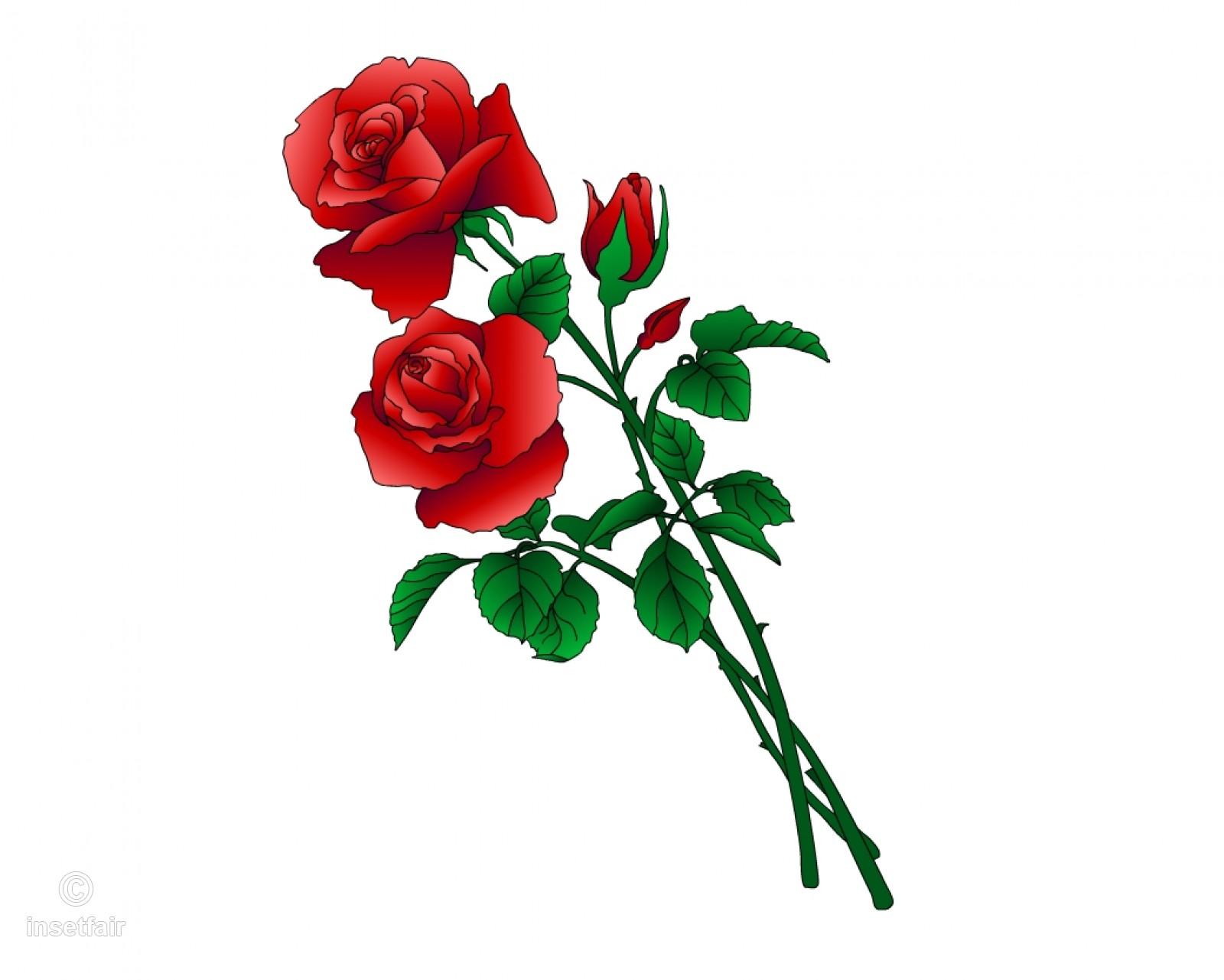 Png Long Stem Roses & Free Long Stem Roses.png Transparent.