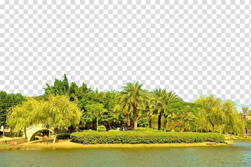 Xiamen Designer Google s, Xiamen island scenery transparent.