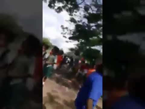 School chick Fight.