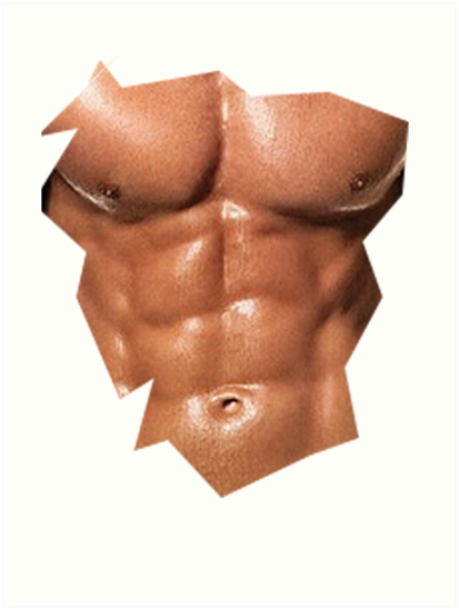 Cool Fake Six Pack Abs Funny T Shirt & G #564647.