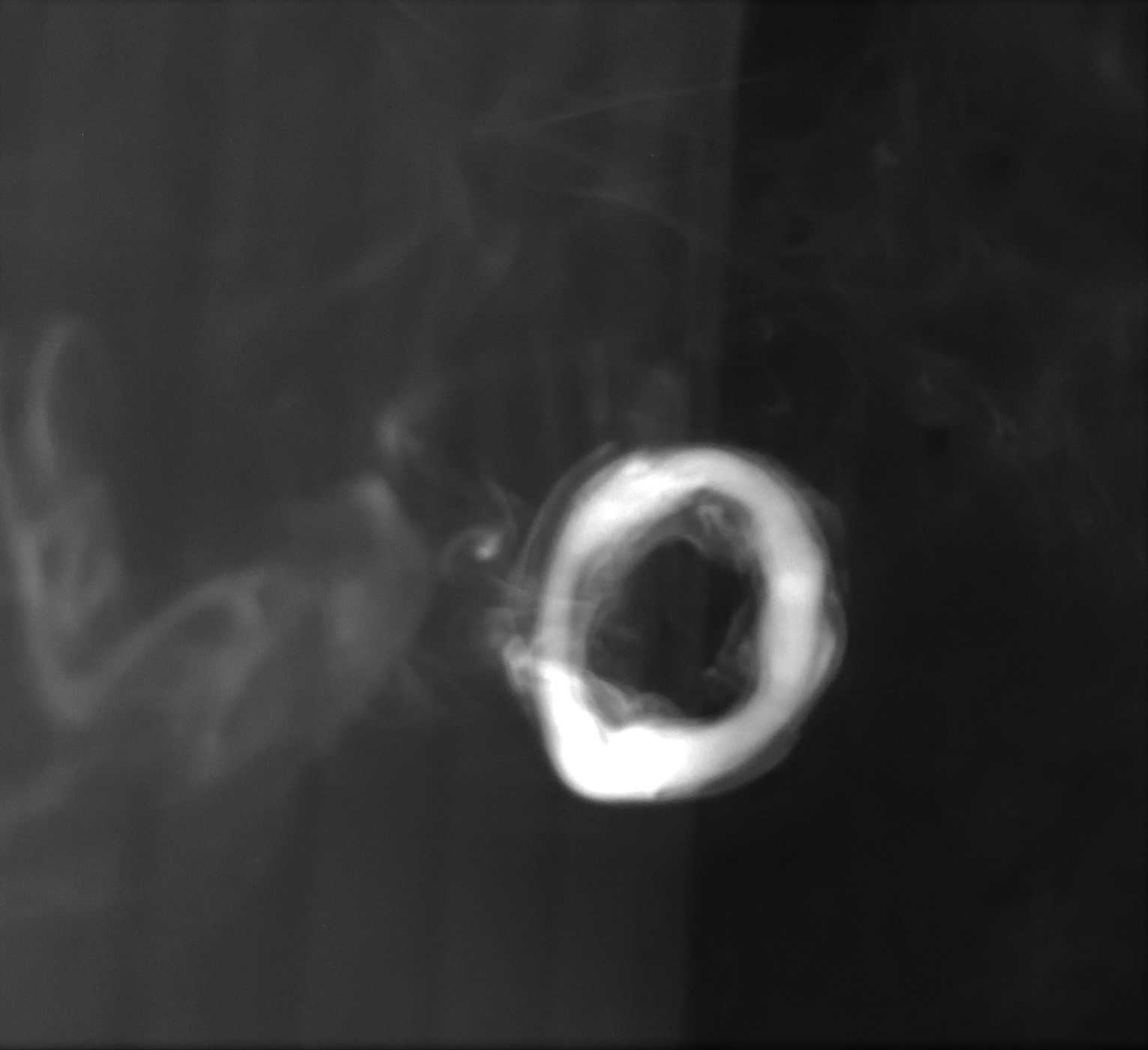 Smoke Ring Png (96+ Images In Collection #567572.