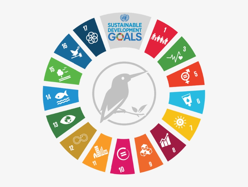 Sustainability Development Goals.