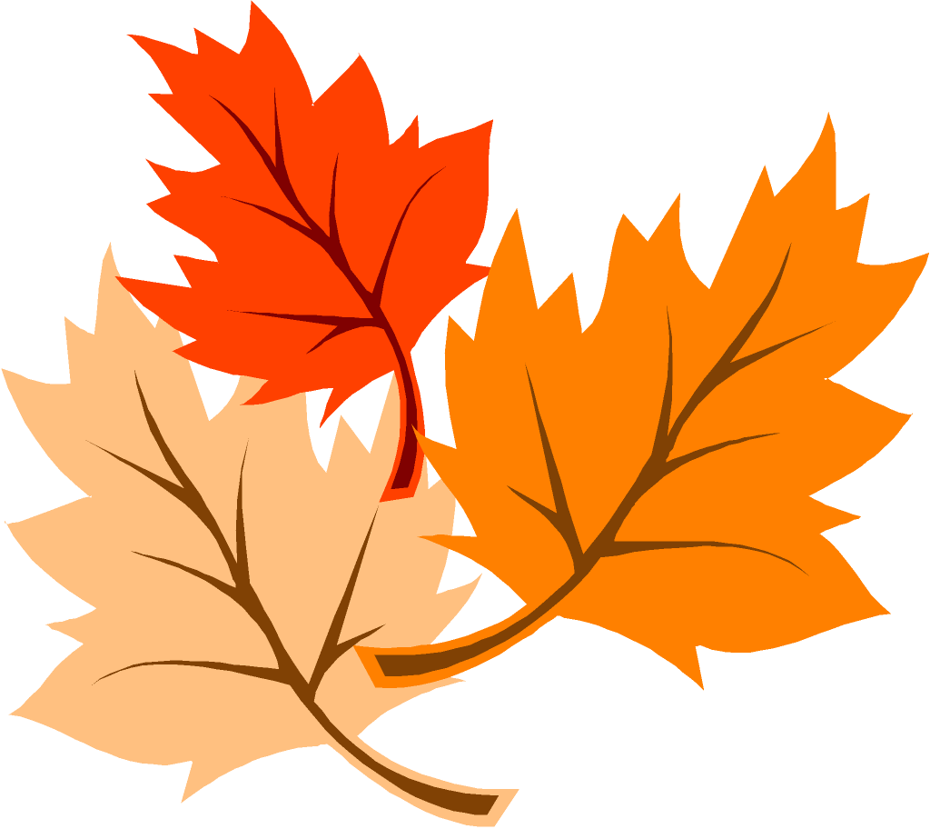 Thanksgiving Leaves transparent PNG.