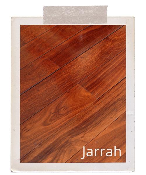 Timber Species.
