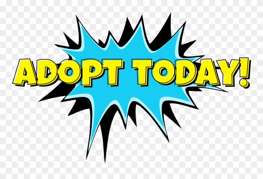 adopt Today\
