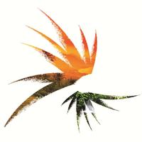 Papua New Guinea Tourism Promotion Authority.