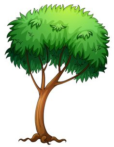 Painted Green Tree PNG Clipart Picture.