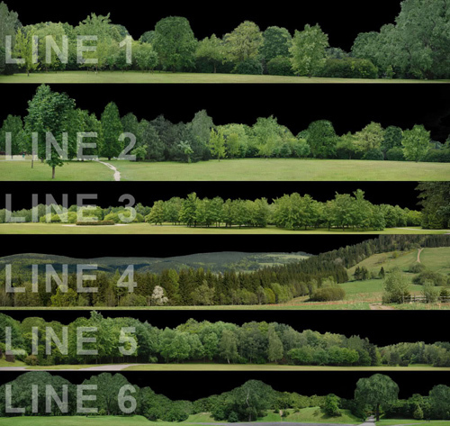 Tree Line PNG Backgrounds.
