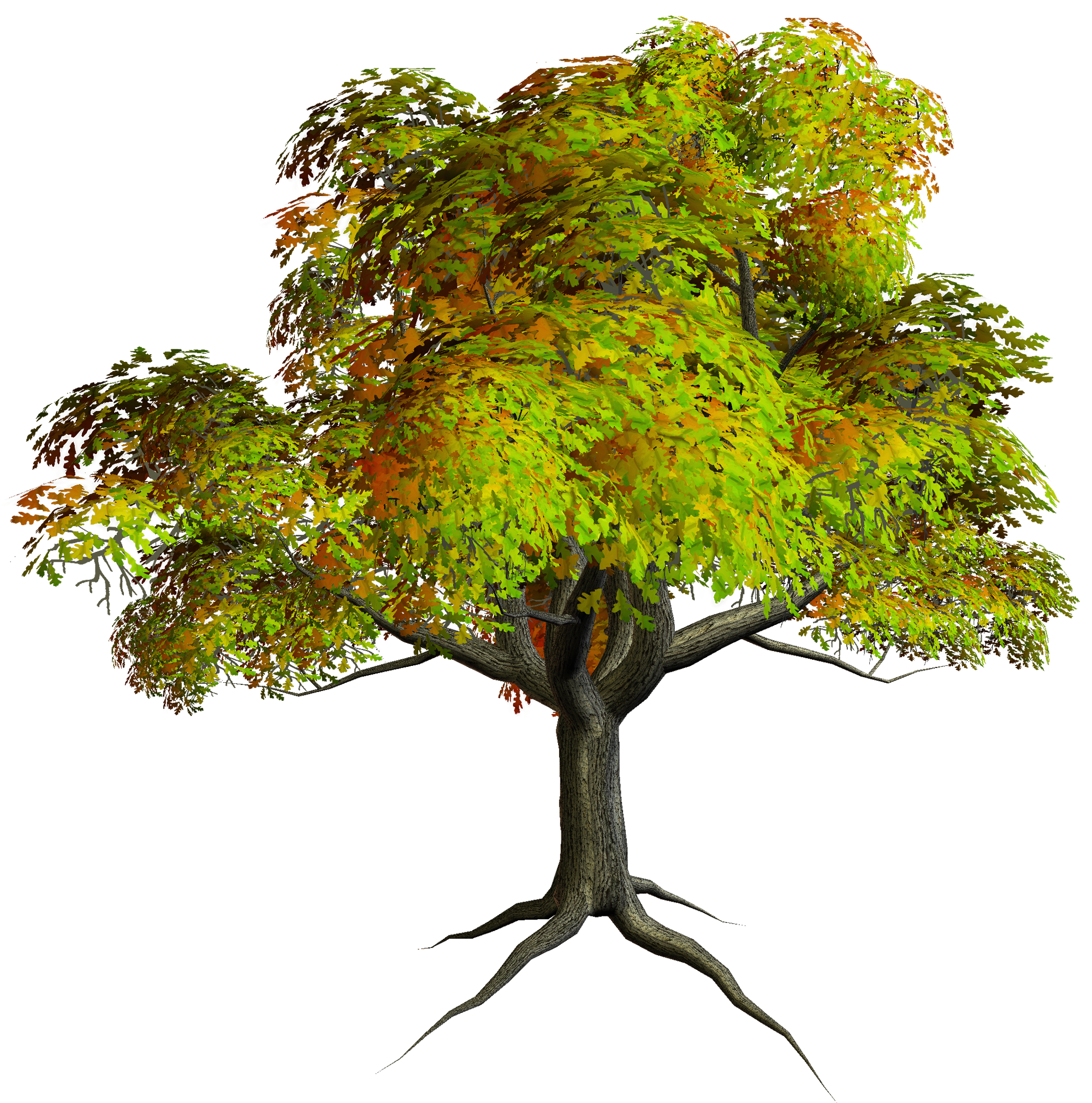 Autumn PNG Tree Clipart.