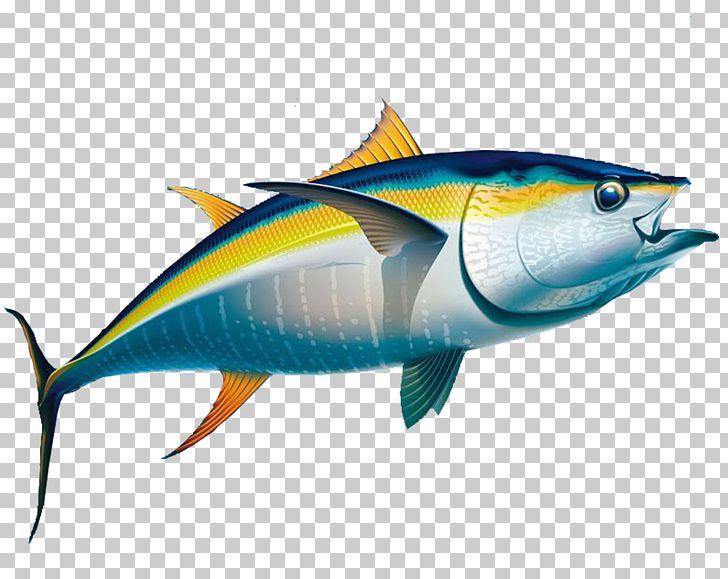 Yellowfin Tuna Fishing Albacore PNG, Clipart, Animals, Baby.