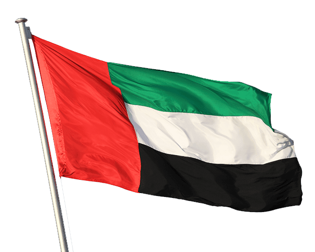 PNG Sector: UAE flag image.