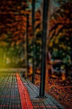 Image dresult for cb edit background hd D.