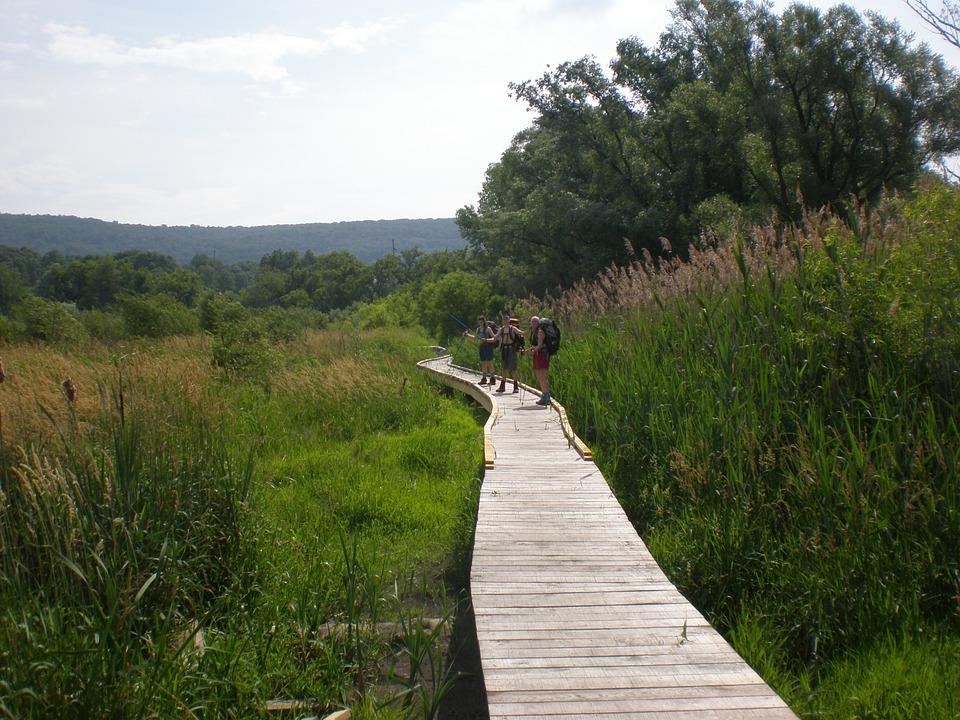 Free photo: Pochuck Creek, Appalachian Trail.