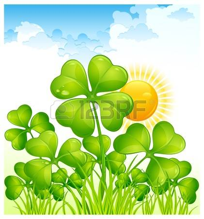 8,660 White Clover Stock Illustrations, Cliparts And Royalty Free.