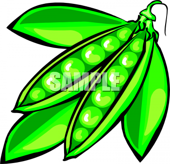Clipart Picture Of A Bunch Of Pea Pods.