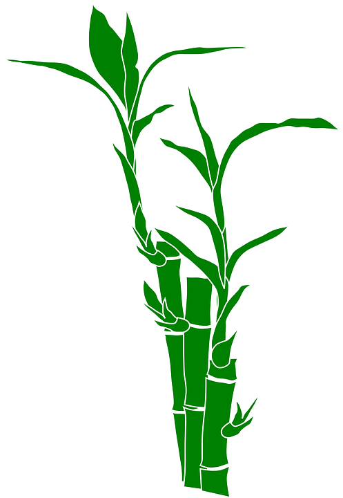 Bamboo Png 18, Buy Clip Art.