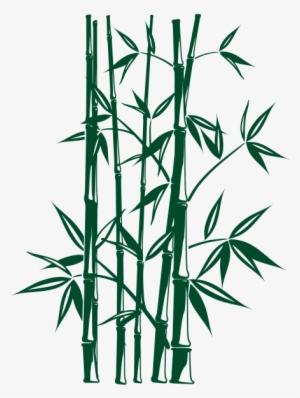 Bambu PNG Images.