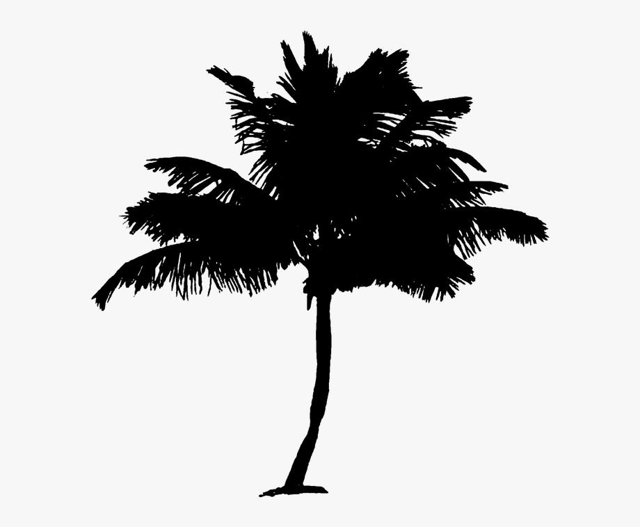 Palm Tree Clipart Pohon Kelapa.